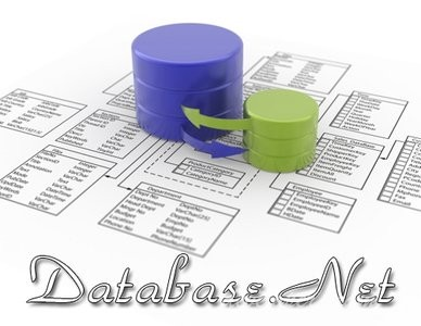 Database .NET Plus 24.8.6701 Retail