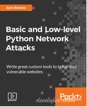 Basic and Low-level Python Network Attacksining
