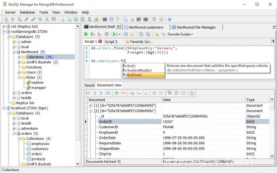 NoSQL Manager for MongoDB Professional 5.8