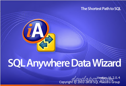 ASA Data Wizard Professional 16.2.0.4