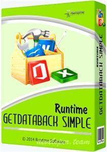 Runtime GetDataBack Simple 5.00