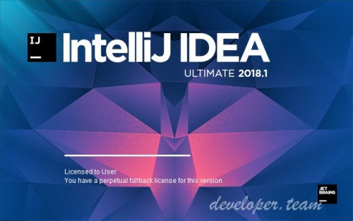 JetBrains IntelliJ IDEA Ultimate 2018.2.2