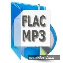 FLAC To MP3 5.1