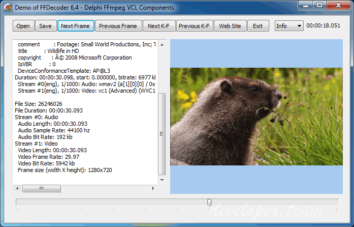 FFVCL– Delphi FFmpeg VCL Components v7.3b for Delphi 10.3 Rio Cracked